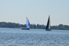 Segler auf dem Strelasund